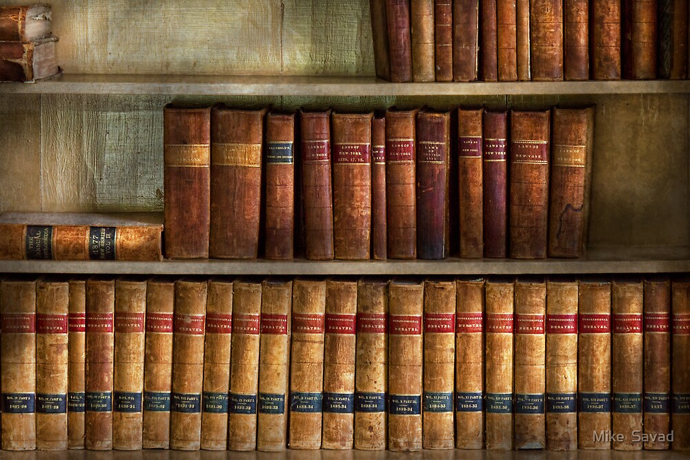 Lawyer - Books - Law books  by Michael Savad