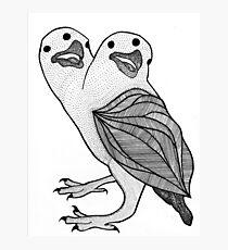 Two Headed Three Eyed Crow Photographic Print