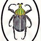 Beetle by ZAPcreativity