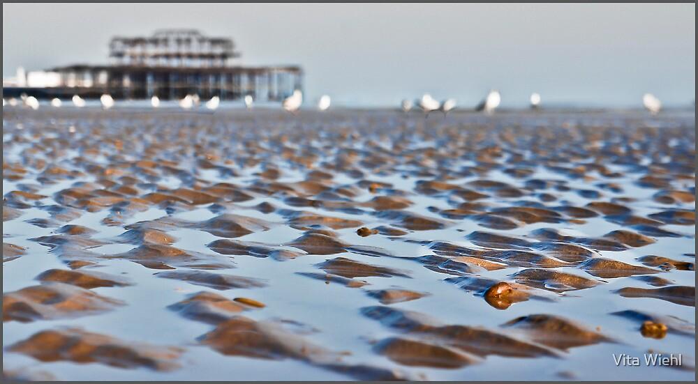 When the ocean breathes by Vita Wiehl