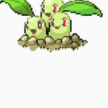 Chikorita was a Dugtrio by ticklemejimjam