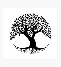 Lovers Tree of Life silhouette Photographic Print