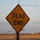 Dead End by WildestArt