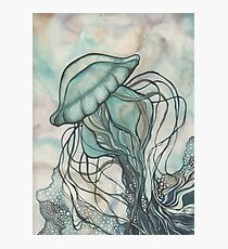 Black Lung Jellyfish Photographic Print