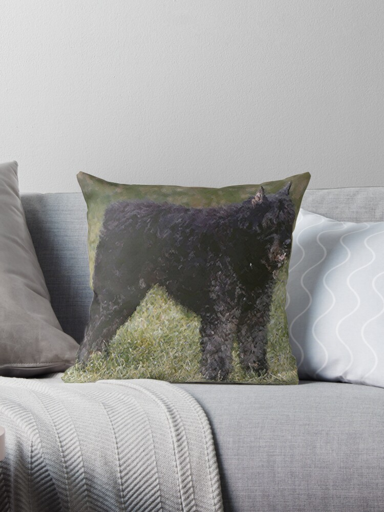 Bouvier Des Flandres Dog Portrait  by Oldetimemercan