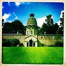 The Pineapple House by RebelPhotoArt