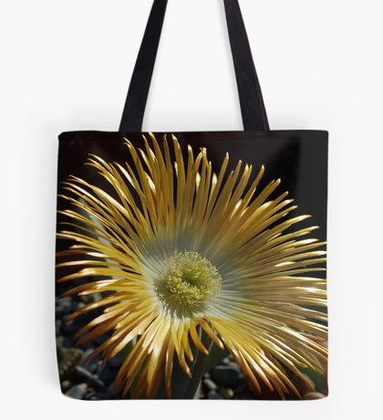 SUCCULENTS OF NAMAKWALAND - WESTERN CAPE SOUTH AFRICA 2 Tote Bag