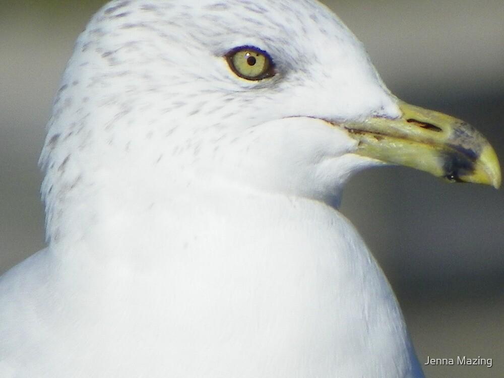 Birds eye view by Jenna Mazing