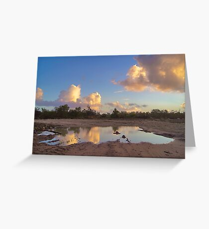 Puddle Of Water Greeting Card