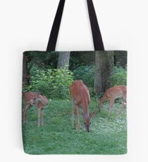 Mommmy Deerest and Her Twin Fawns Tote Bag