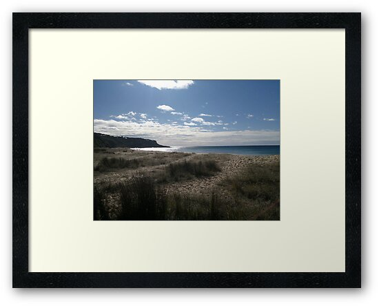 'Grassy Shores' by Photography by  Carolyn