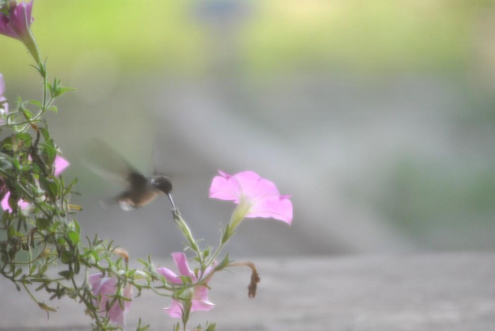 Pink Flowers Taste Best by DottieDees