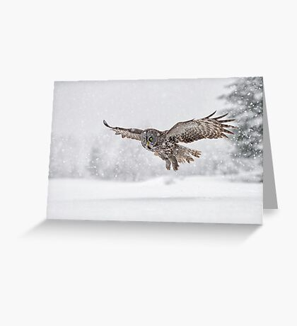 Always on the hunt... Greeting Card