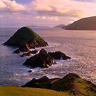 The Blasket Islands by Simon Bowen