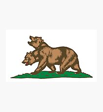 New Bears of the Californian Republic Photographic Print