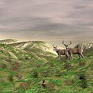 Deer by Walter Colvin