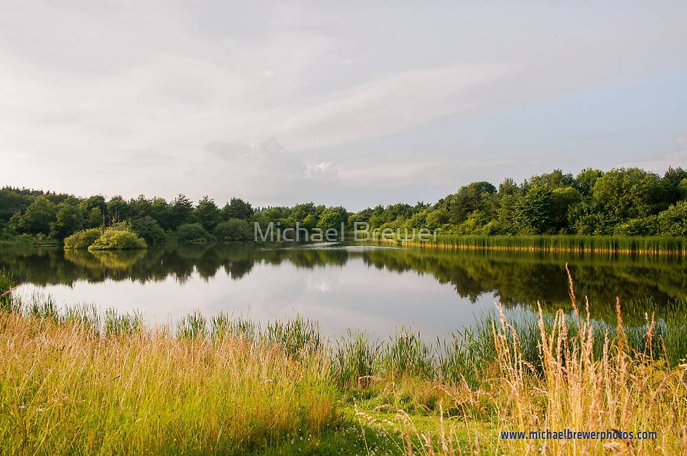 A Small Lake on the Germany - Denmark Border by Michael Brewer