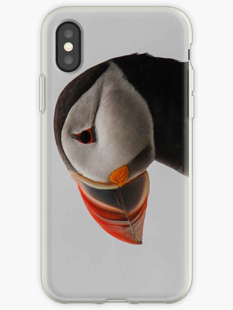Puffin iPhone Case by Nathan Colquhoun