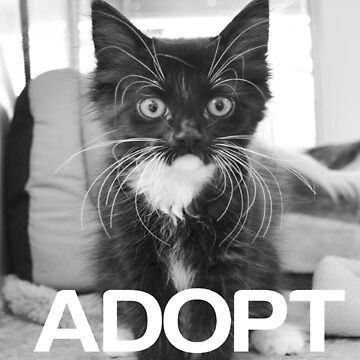 DONT SHOP. ADOPT. - BLACK & WHITE by PawsUp