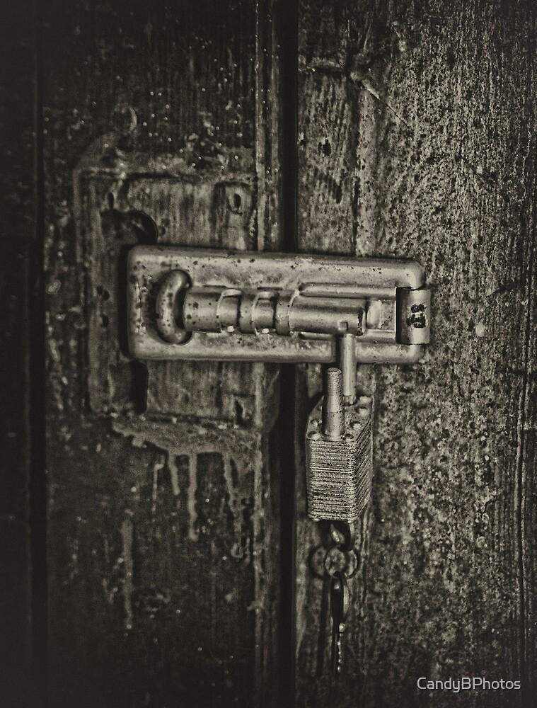 Unlocked by CandyBPhotos