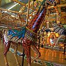 Giraffe by CandyBPhotos
