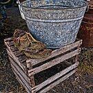 Kick the bucket by CandyBPhotos