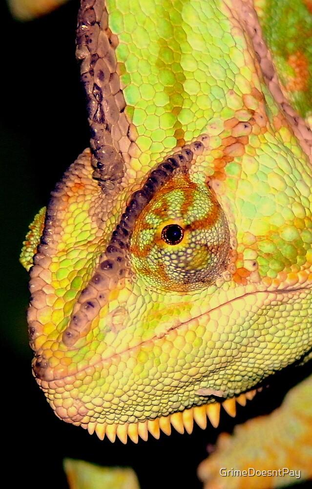 Chameleon by GrimeDoesntPay