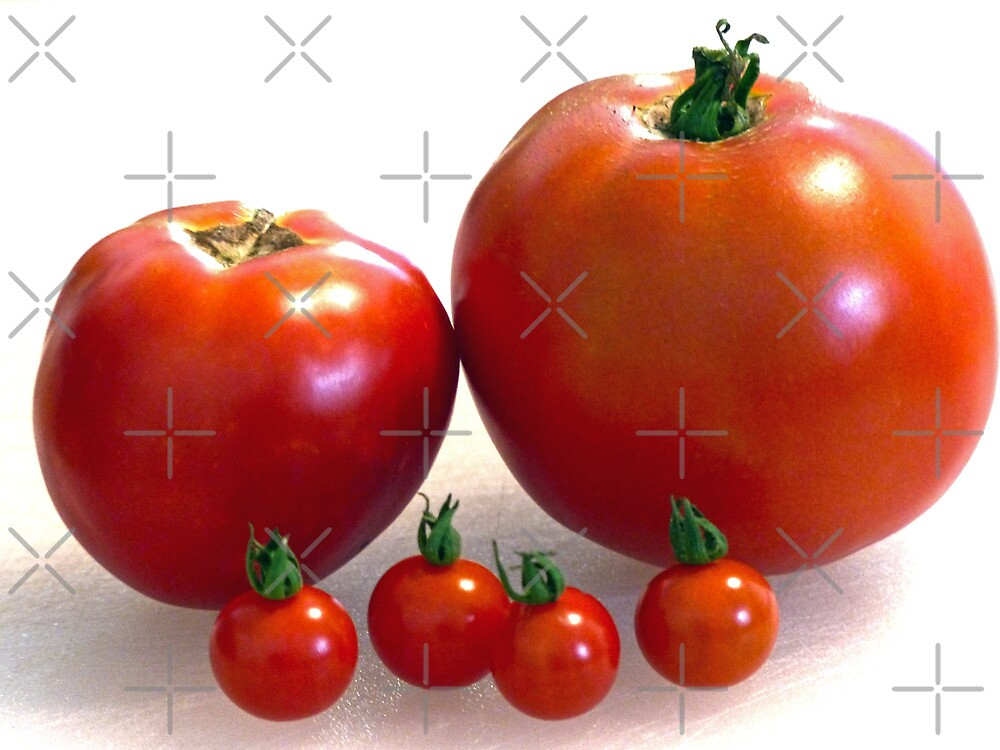 Happy Tomato Family by FrankieCat
