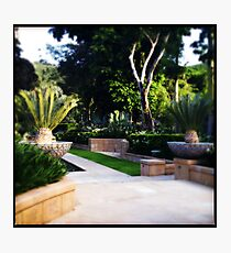 Even More Formal Gardens Photographic Print