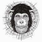 chimpanzee by MARTYHENLEY