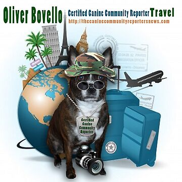 Meet Oliver Bovello, Canine Community Reporter by pictureamoment