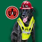 Max A. Pooch-Canine Community Reporter-Environmental by Kathy Tarochione