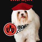 Oscar Myers, Canine Community Reporter-Travel by Kathy Tarochione