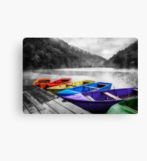 Which color will you take? Canvas Print