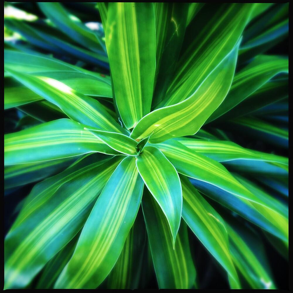 Tropical Plant Love by Niki Smallwood