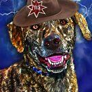 A Canine Community Reporter Fine Art Creation by Kathy Tarochione