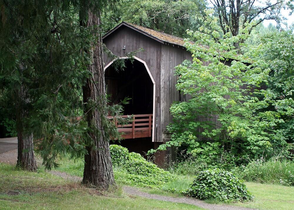 Pass Creek Covered Bridge by Dave Davis