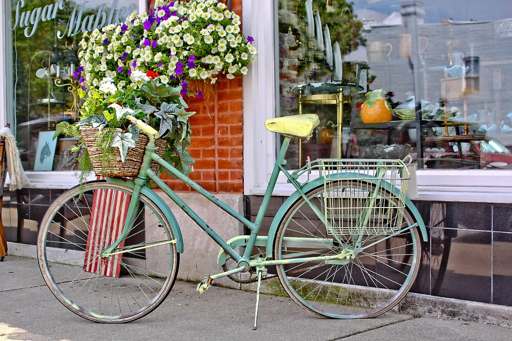 OLD BICYCLE IN FRONT OF ANTIQUE SHOP by Pauline Evans
