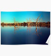 Dawn Races - Lake Pinaroo NSW Poster