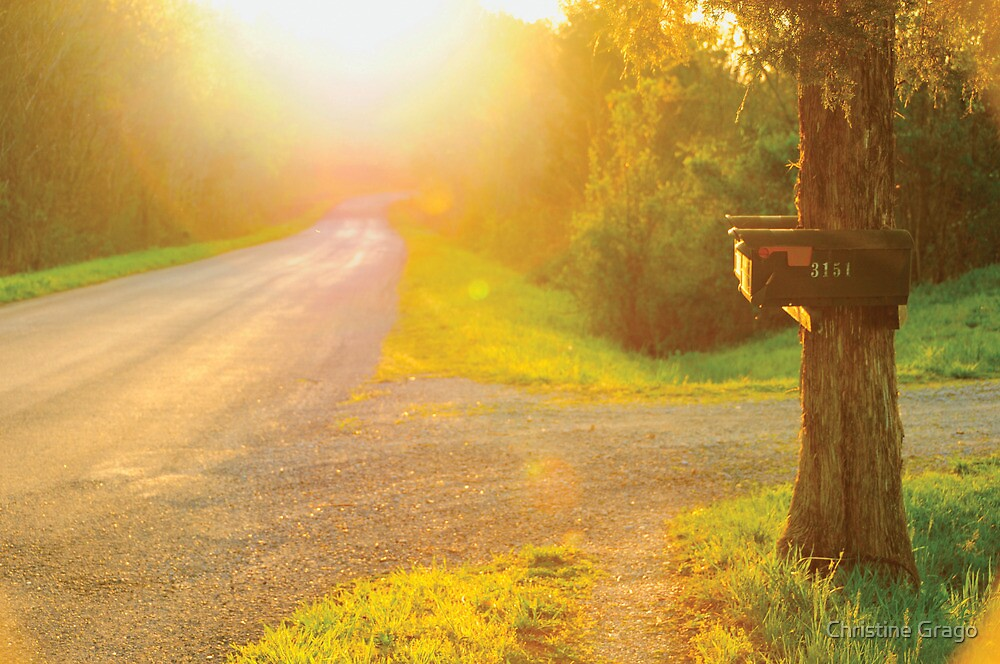 Tennessee Country Road at Sunset by Christine Grago