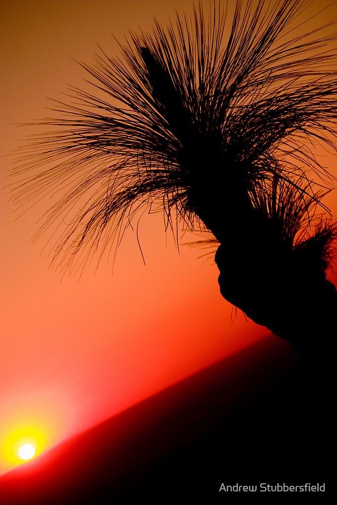 Bunya Sunset 2 by AWS-PHOTOGRAPHY