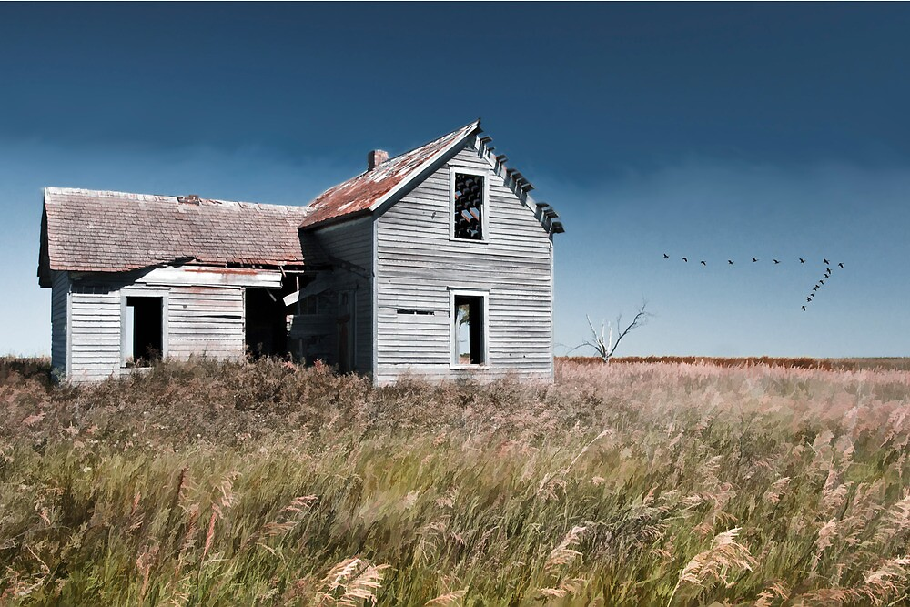 Prairie Farmhouse and Migrating Geese by Randall Nyhof