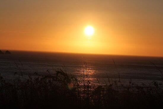 Ocean Sunset by Molly Quinn