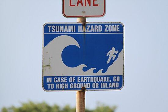 Tsunami Hazard Zone by Molly Quinn