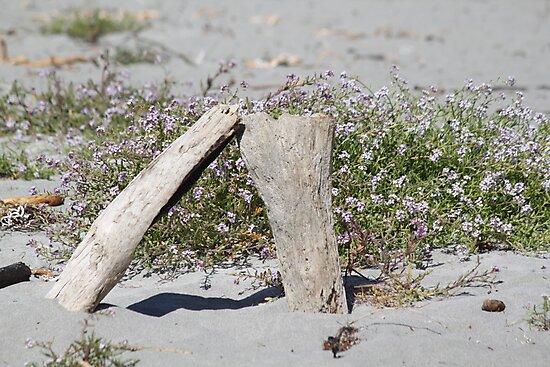 Wooden Sand Art by Molly Quinn