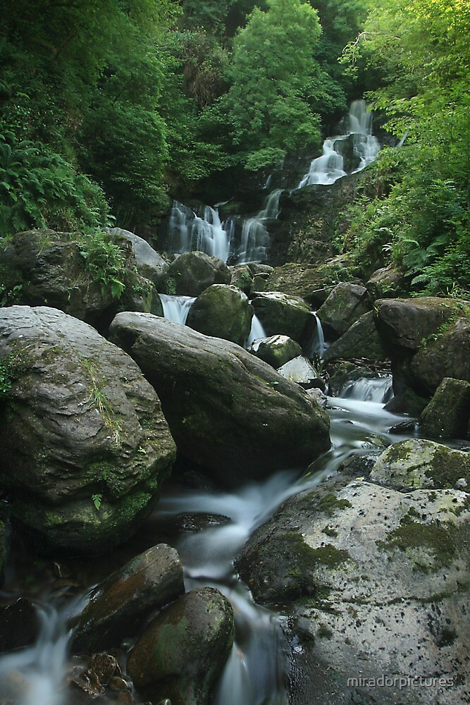 Torc falls in Killarney national park, ring of kerry, Ireland by miradorpictures
