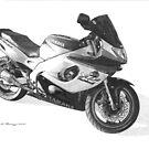 Yamaha YZF600R Thundercat by Steve Pearcy