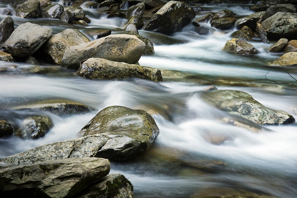 Smokey Mountain Stream by Randall Nyhof