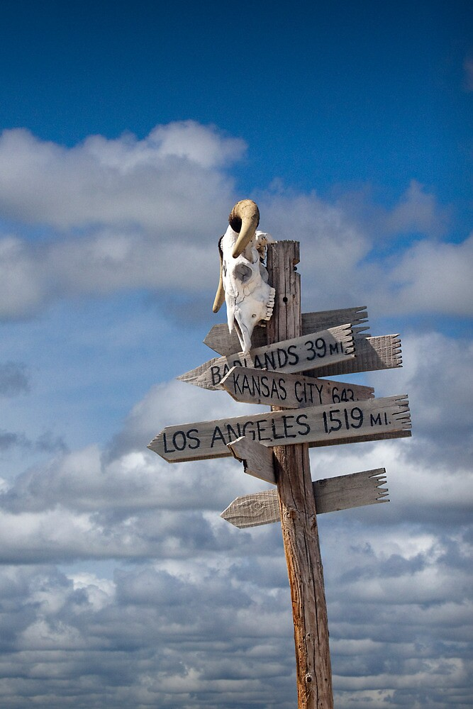 Western Sign Post with Steer Skull by Randall Nyhof