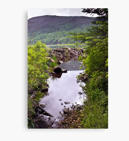 Beaver Dam and Mountains Canvas Print